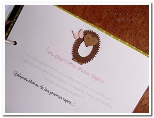 livre naissance victoire - vert, rose et marron - fôret enchantée (44)