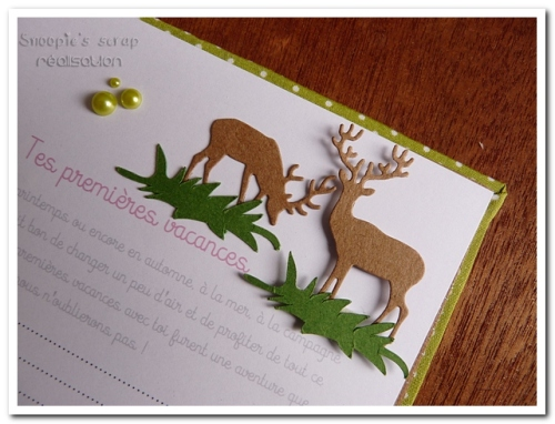 livre naissance victoire - vert, rose et marron - fôret enchantée (48)