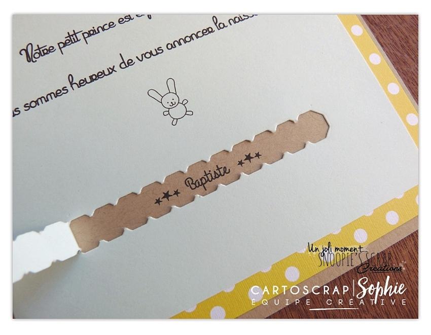Connu Faire-part naissance surprise – Lapin NP43