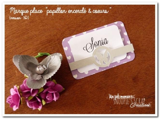 marque-place-papillon-encercle-coeurs-3d-2
